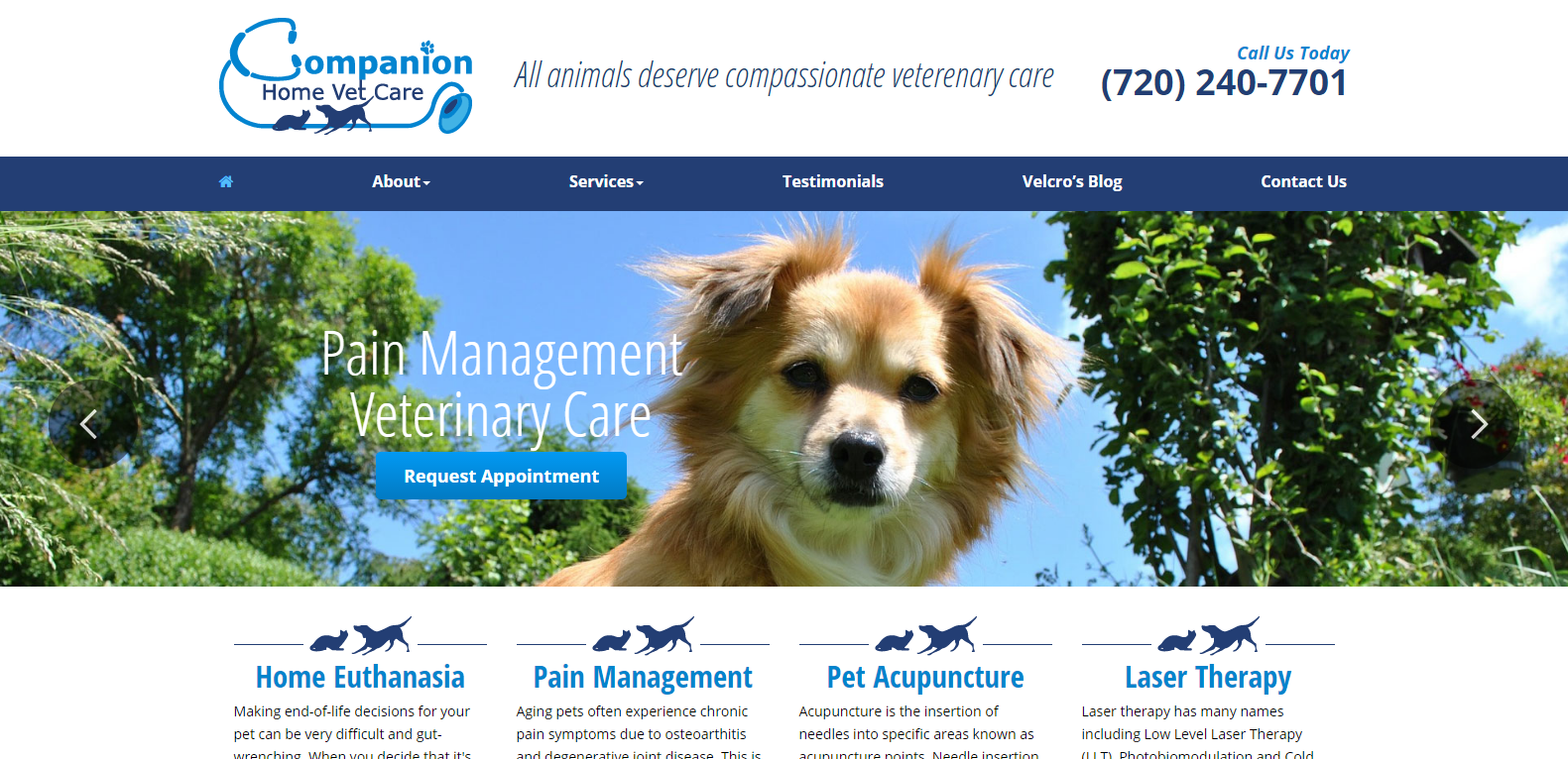 Companion Home Pet Care